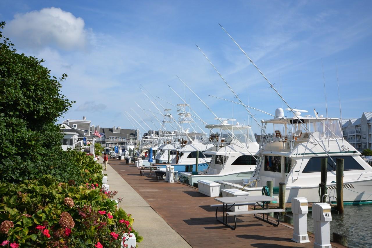 Harbor Island Ocean City Md Rentals